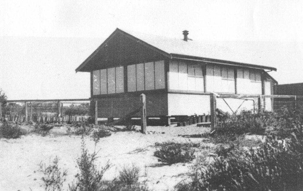 Protheroe School 1916