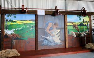 Shearing Mural at Chapman Valley museum