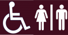 Wheelchair_Toilets